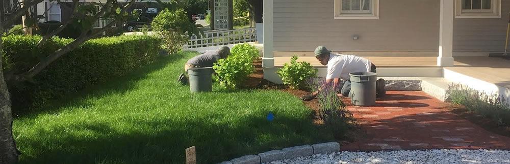 Truro Landscape Maintenance